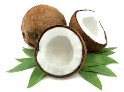 Coconut India | Coconut suppliers in India | Coconut