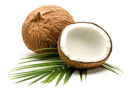 tender Coconut suppliers in maddur