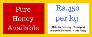 Coconut India | Coconut suppliers in India | Coconut